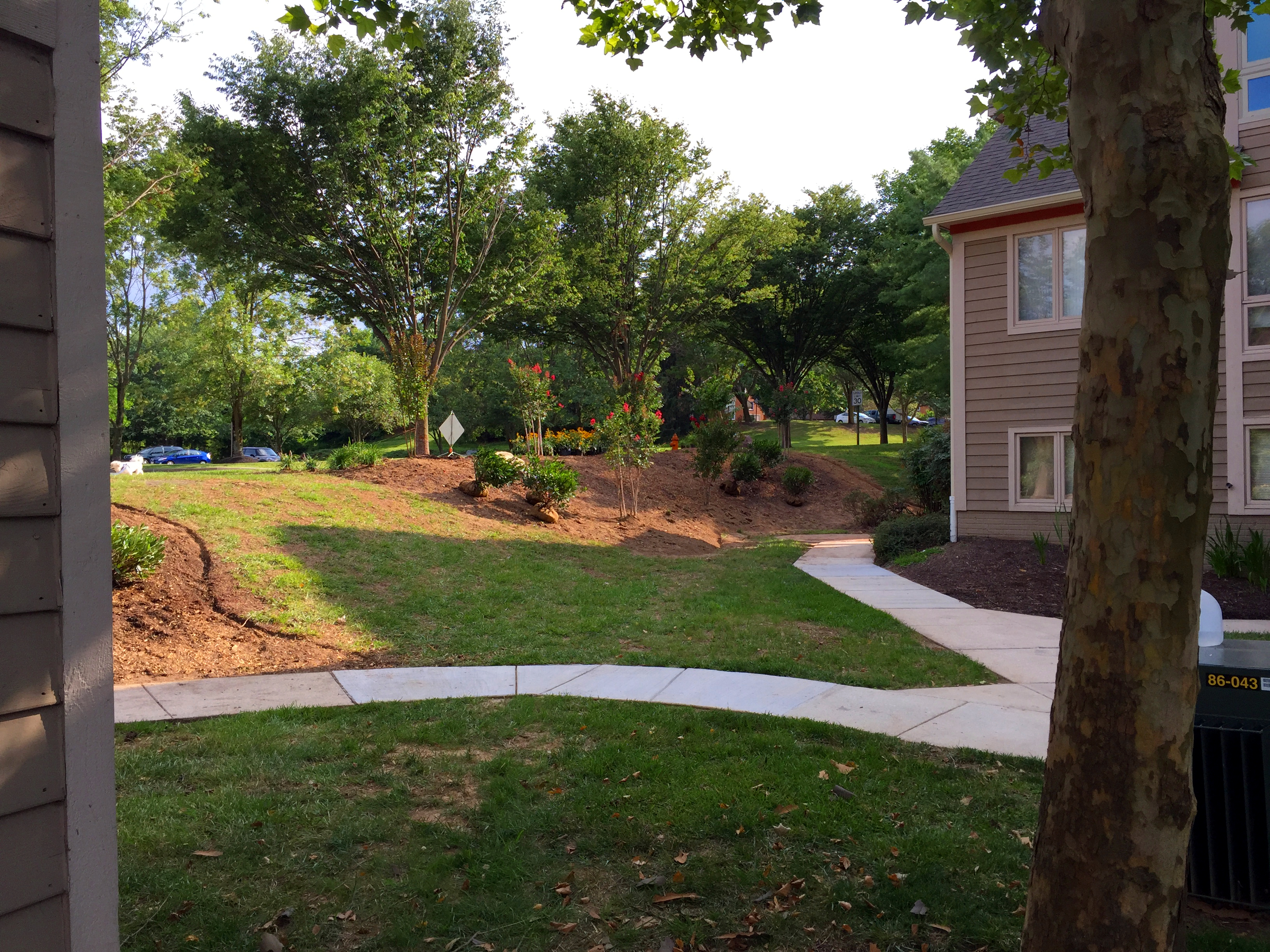 Landscaping in Arnold MD