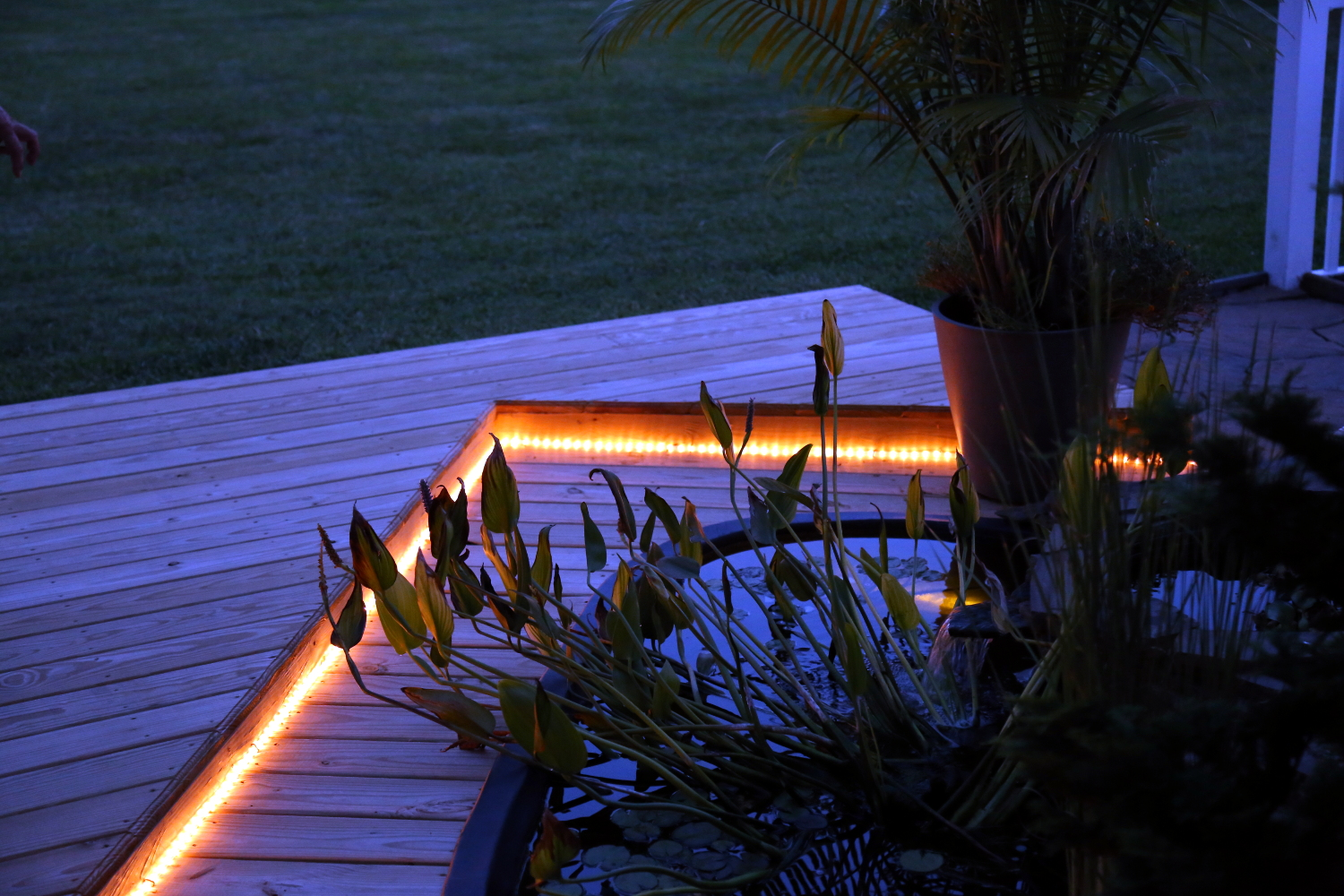 Landscape lighting and design in Arnold MD