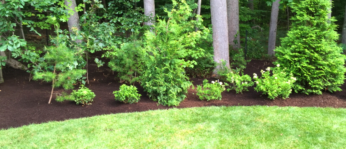 Landscaping Company in Millersville MD