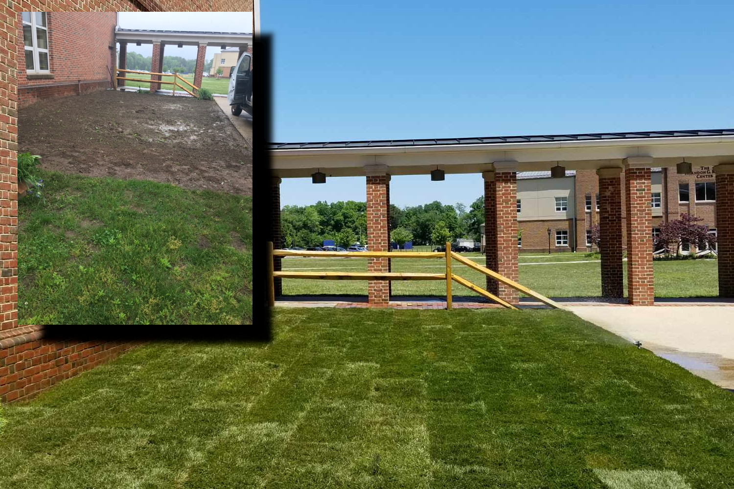 Lawn Care Sod install Severn MD